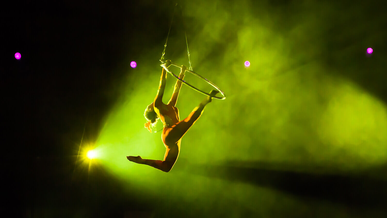 Case Study - Cirque du Soleil