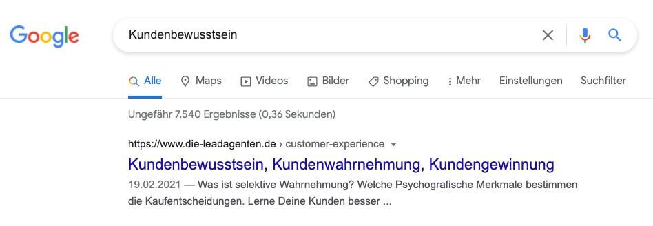Beispiel Title und Description in Google Suchmaske